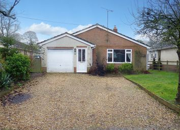 Thumbnail 3 bed detached bungalow for sale in Beechfield, Newton Toney, Salisbury