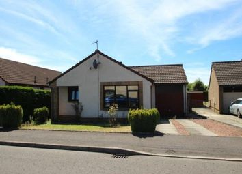 Thumbnail 3 bed bungalow for sale in Millar Place, Falkirk, Stirlingshire