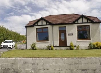 Thumbnail 3 bed bungalow to rent in Capel Seion, Pontyberem, Llanelli