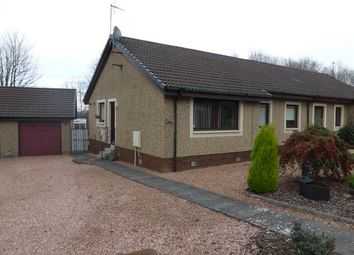 Thumbnail 3 bed semi-detached bungalow to rent in Talman Gardens, Polmont, Falkirk
