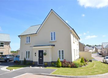 Thumbnail 4 bed detached house for sale in Gould Place, Newton Abbot, Devon