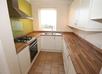 Thumbnail 2 bed flat to rent in Pettus Road, Norwich