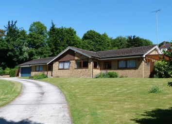 Thumbnail 4 bedroom bungalow for sale in Bourke Hill, Chipstead, Coulsdon