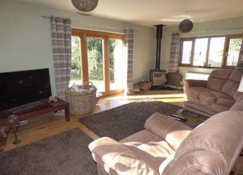 Thumbnail 2 bed bungalow for sale in Woodgreen, Fordingbridge, Hampshire