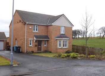 Thumbnail 4 bed detached house to rent in Haldon Grove, Glenboig, Coatbridge