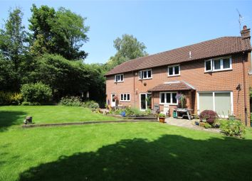 Thumbnail 5 bed detached house for sale in St Faith Close, Four Marks, Alton, Hampshire