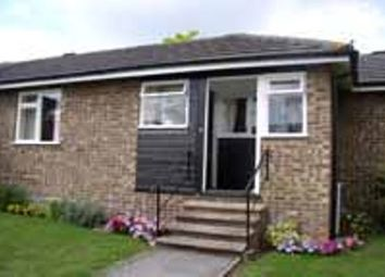 Thumbnail 2 bed bungalow to rent in Barnes Close, Sturminster Newton, Dorset