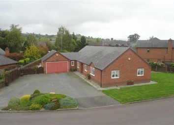 Thumbnail 3 bed detached bungalow for sale in Pren Helyg, 16, Withy Avenue, Forden, Welshpool, Powys