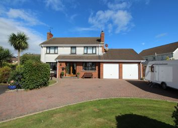 Thumbnail 4 bed detached house for sale in Red Fort Park, Carrickfergus