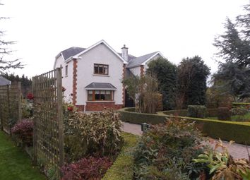Thumbnail 5 bed detached house for sale in Streamstown, Killyon, Birr, Offaly