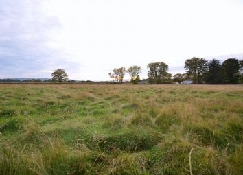 Thumbnail Land for sale in Evelix, Dornoch