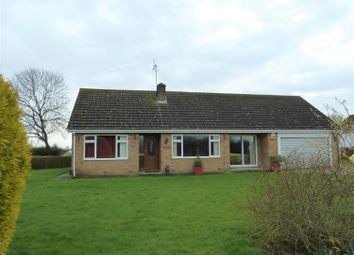 Thumbnail 4 bed detached bungalow for sale in Partney Road, Sausthorpe, Spilsby