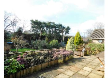 Thumbnail 2 bed detached bungalow for sale in Highview Road, Heathfield