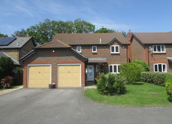 Thumbnail 4 bed detached house to rent in Bathurst Close, Hayling Island, Hampshire