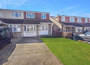 Thumbnail 4 bed semi-detached house for sale in Longacre, Writtle, Chelmsford, Essex