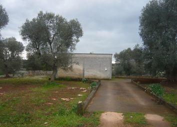 Thumbnail 3 bed farmhouse for sale in Lamia Pasquale, Carovigno, Puglia, Italy