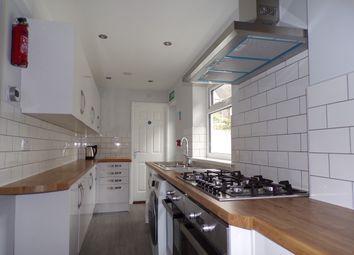 Thumbnail Terraced house to rent in St Helen's Avenue, Brynmill, Swansea