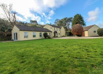 Thumbnail 4 bed detached house for sale in Dreemskerry Hill, Maughold
