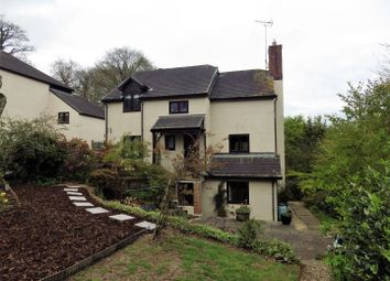 Thumbnail 4 bedroom detached house for sale in Shute Wood, Hollocombe, Chulmleigh
