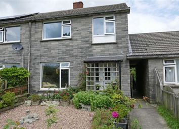 Thumbnail 3 bed terraced house for sale in Newton St. Petrock, Holsworthy