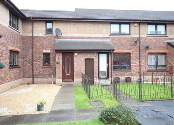 Thumbnail 2 bed terraced house to rent in Mournian Way, Hamilton