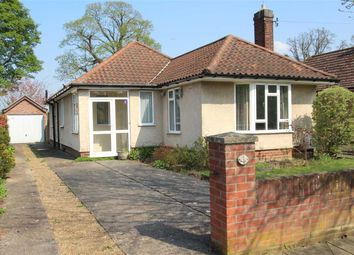 Thumbnail 3 bedroom bungalow for sale in Bromeswell Road, Ipswich