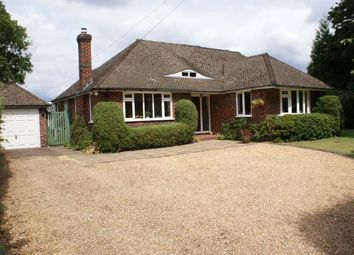 Thumbnail 4 bed bungalow for sale in Sutton Green, Woking, Surrey