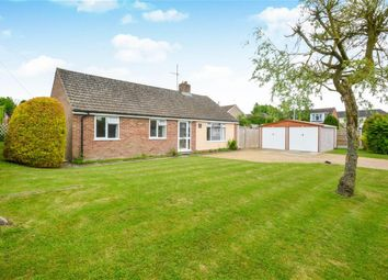 Thumbnail 3 bed detached bungalow for sale in Salt Lane, Winterbourne Gunner, Salisbury