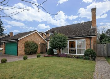 Thumbnail 4 bed detached house to rent in Woodmancourt, Godalming