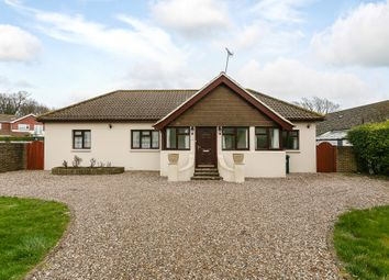 Thumbnail 4 bed bungalow for sale in Greenways, Brighton