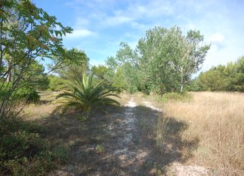 Thumbnail Land for sale in Land With Lake View, Otranto, Lecce, Puglia, Italy