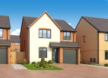 """Thumbnail 4 bedroom property for sale in """"The Pine At Roman Fields """" at Beadle Way, Peterborough"""