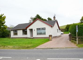 Thumbnail 3 bed detached bungalow for sale in Ballydugan Road, Downpatrick, County Down
