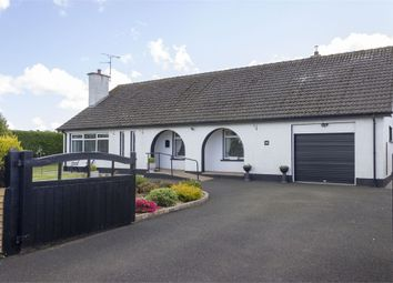 Thumbnail 3 bed detached bungalow for sale in Betts Road, Limavady, County Londonderry