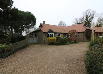 Thumbnail 4 bed detached bungalow to rent in Whitefriars Meadow, Sandwich