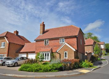 Thumbnail 4 bed detached house for sale in Reef Way, Hailsham