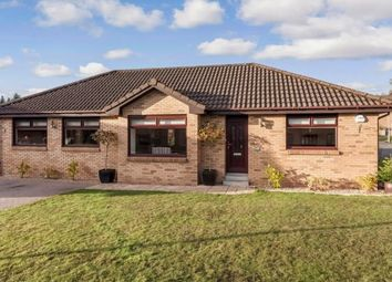 Thumbnail 4 bed bungalow for sale in Turnhill Drive, Erskine, Renfrewshire