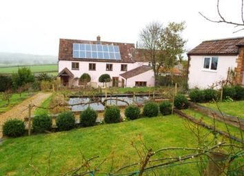 Thumbnail 3 bed cottage for sale in Higher Chillington, Ilminster