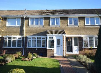 Thumbnail 3 bed terraced house for sale in Fennel Grove, South Shields