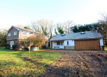 Thumbnail 4 bed detached house to rent in Arundel Road, Arundel