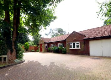 Thumbnail 4 bedroom detached bungalow for sale in St. Lawrence Close, Abbots Langley