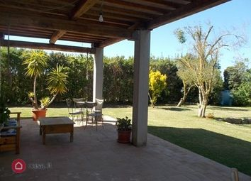 Thumbnail 3 bed semi-detached house for sale in Capalbio, Capalbio, Grosseto, Tuscany, Italy