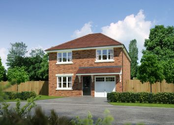 """Thumbnail 4 bed detached house for sale in """"Denewood"""" at Church Road, Warton, Preston"""
