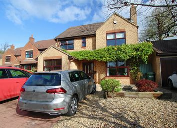 Thumbnail 4 bed detached house to rent in Lime Croft, Yate, South Gloucestershire