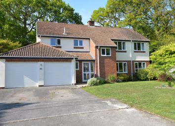 Thumbnail 4 bed detached house for sale in Badgers Copse, New Milton