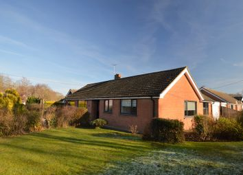 Thumbnail 4 bedroom bungalow for sale in Ashford Drive, Maidstone, Kent