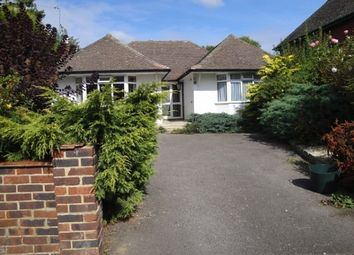 Thumbnail 3 bedroom bungalow to rent in The Drive, Cranleigh