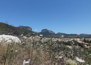 Thumbnail Land for sale in Alaro, Mallorca, Spain
