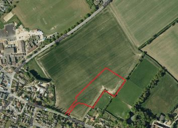 Thumbnail Land for sale in Yarmouth Road, Stalham, Norwich