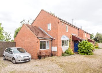 Thumbnail 3 bedroom detached house to rent in The Willows, Abbey Street, York, North Yorkshire